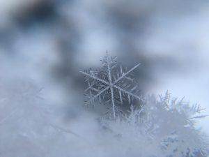 Snowflake up close