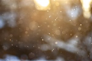 Light snow illuminated by the Sun